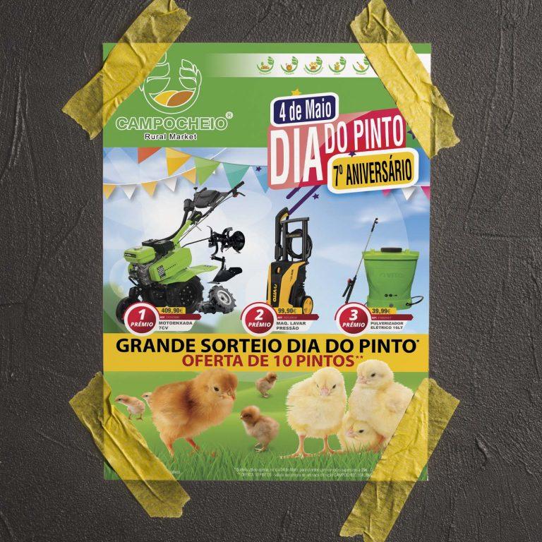 """Folheto """"Dia do Pinto e 7º Aniversário"""""""