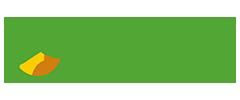 layoutcriativo - cliente - campocheio
